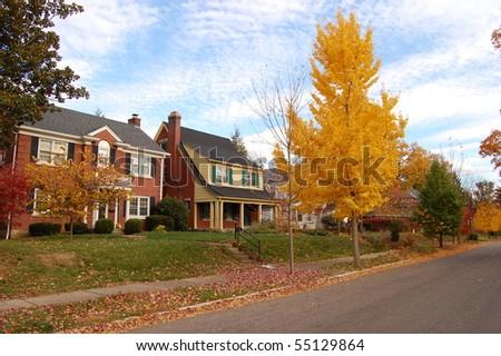 Traditional American Neighborhood - stock photo