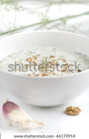 Traditional bulgarian cold summer soup made of yoghurt, cucumbers, garlic, oil, nuts - stock photo