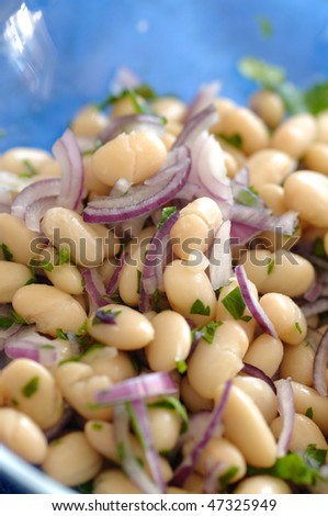 Traditional bulgarian salad made of beans, onion, parsley, salt, vinegar and sunflower oil