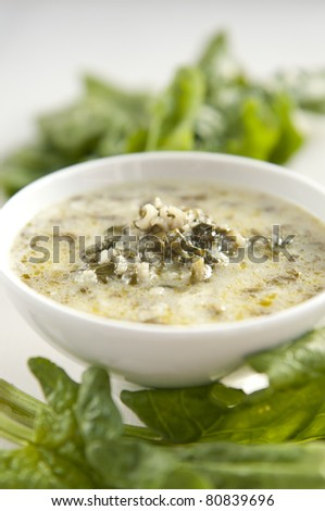 Traditional bulgarian spinach soup made of fresh spinach leaves and rice - stock photo