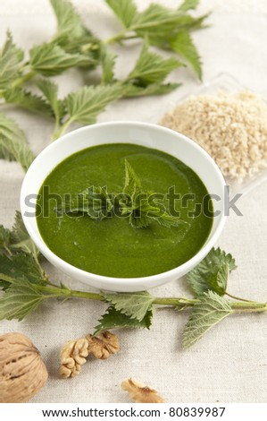 Traditional bulgarian urtica cream made from fresh leaves at spring - stock photo