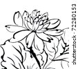 Traditional Chinese painting of flower on white background. - stock photo