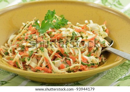 Traditional coleslaw with sweet cabbage, carrot, parsley and shallots in creamy tangy dressing - stock photo