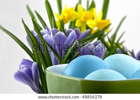 traditional easter eggs in cup with crocuses and daffodils behind