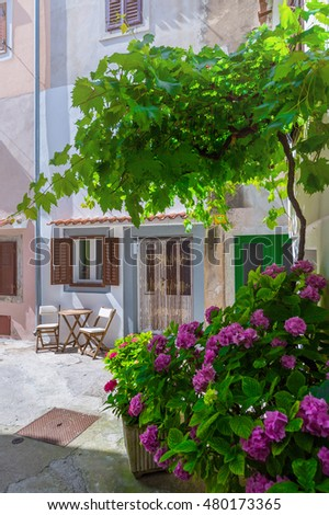 Traditional European Mediterranean architectural style in the streets and residential houses, porches, stairs, shutters in the noon sunbeam, surrounded by vine, hydrangea and palm at summertime. Baska