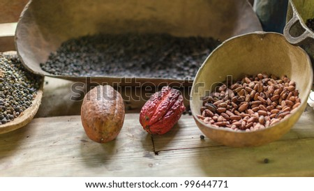 Traditional farm in the Dominican Republic where cocoa,chocolate and coffee are produced in the old fashion way. - stock photo