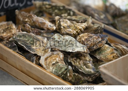 Traditional  fish market stall full of fresh shell oysters - stock photo