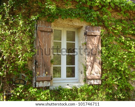 Traditional French farmhouse window with old shabby shutters surrounded by Virginia creeper and Honeysuckle - stock photo