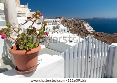 Traditional greek flowers - stock photo
