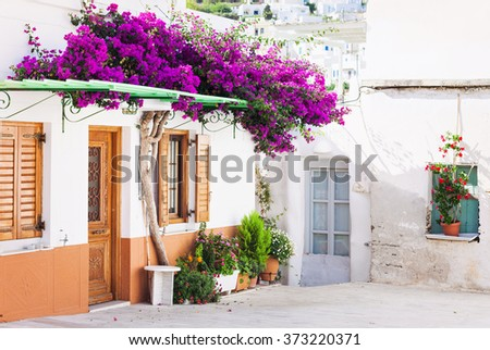 traditional greek house flowers paros island stock photo 336328574