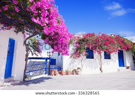 Traditional greek house with flowers in Paros island, Greece. Blue door and blue window surrounded by magenta flowers. - stock photo