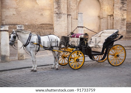 Traditional horse and carriage in front of Cathedral Santa Maria de la Sede in Seville, Andalusia, Spain. - stock photo