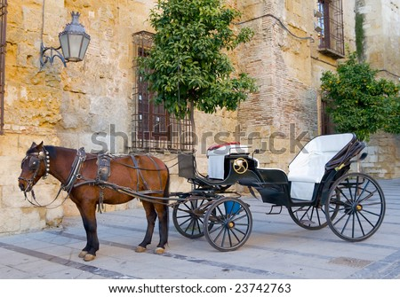 Traditional Horse and Cart in Andalusia, Southern Spain - stock photo
