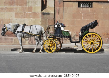 Traditional horse carriage in Malaga. Spain. Touristic transport - stock photo