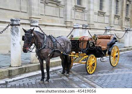 Traditional horse carriage in Seville. Spain. Touristic transport - stock photo