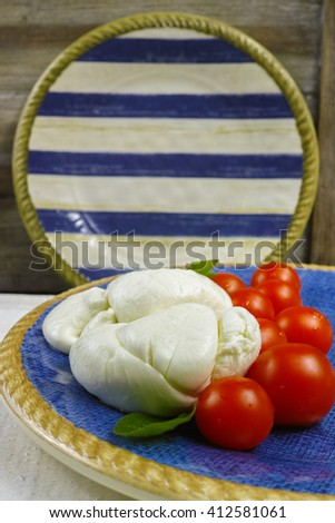 Traditional italian mozzarella buffala with tomatoes and basil on blue-white plate, copy space - stock photo