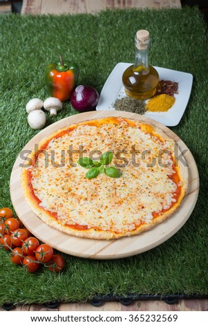 Traditional italian pizza which main ingredient is cheese in four version: mozzarella, fromage, blue cheese and smoked cheese. - stock photo