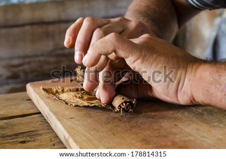 Traditional manufacture of cigars at the cuban tobacco factory, Havana, Cuba - stock photo