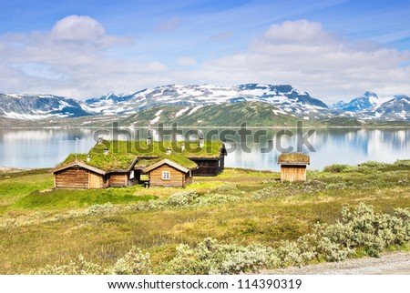 traditional norwegian houses with grass - stock photo