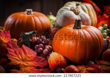 Traditional pumpkins for Thanksgiving and  Halloween in warm colors