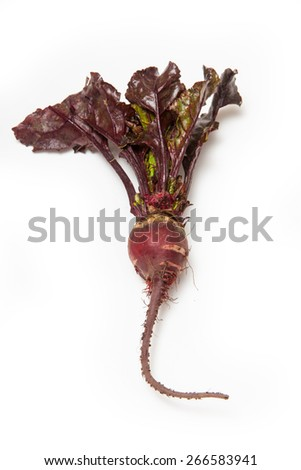 Traditional purple Beetroot isolated on a white studio background. - stock photo