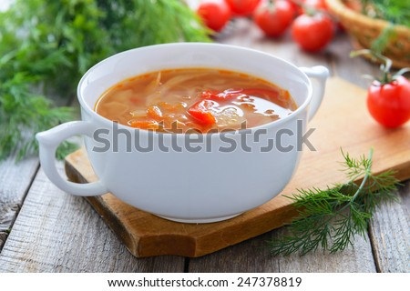 Traditional Russian cuisine - vegetable soup with cabbage  - stock photo