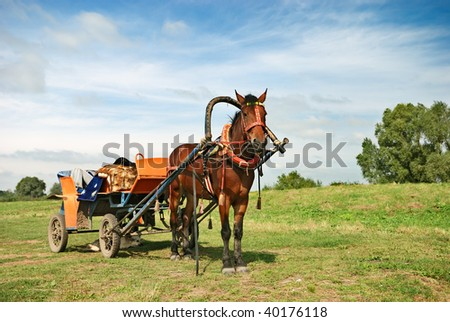 traditional russian horse-drawn vehicle - stock photo