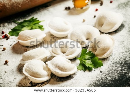 Traditional Russian meat dumplings, cooking illustration, selective focus
