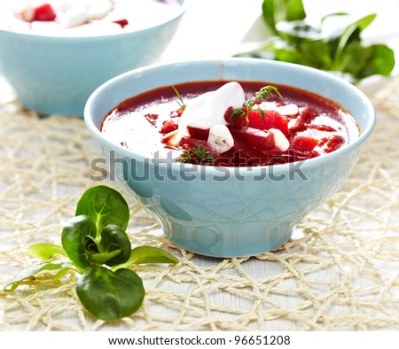 Traditional Russian Ukrainian Borscht Soup