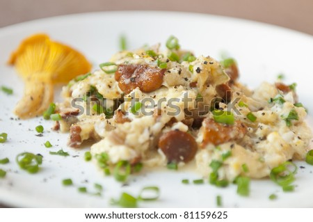 Traditional scrambled eggs with fresh chanterelle - stock photo