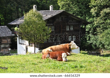 stock images similar to id 63515737   swiss village