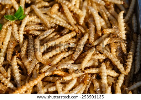Traditional Thai food different insects, larvae