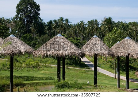 traditional thai roofs providing shade on a hot summers daya hot summer day