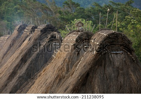 Traditional village Bena rooftops in Flores island - stock photo