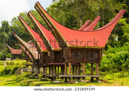 Traditional village of residential buildings with decorated facade and boat shaped roofs. Tana Toraja, South Sulawesi, Indonesia. - stock photo