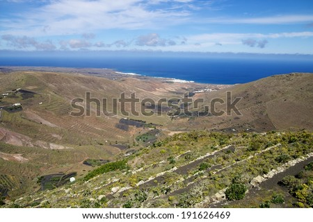 Traditional vineyards in the barren volcanic landscape of Lanzarote island, Spain - stock photo