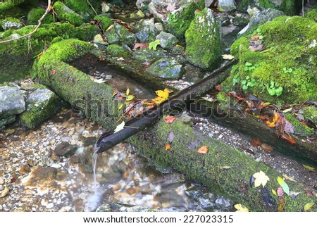 Traditional wood pipe collects water from a spring in autumn - stock photo