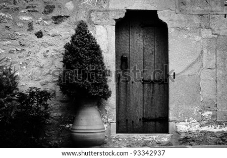 Traditional wooden door of an old building
