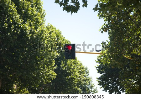 Traffic light with red signal in Florence, Italy - stock photo
