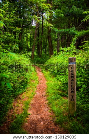 Trail and trail marker post in Shenandoah National Park, Virginia. - stock photo