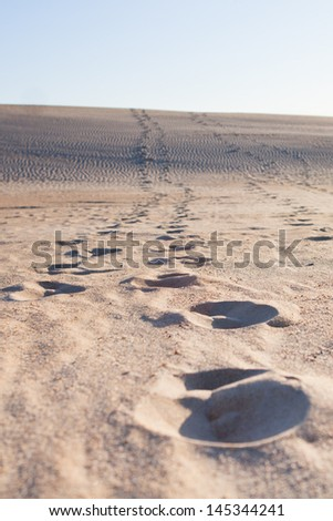 Trail of footsteps in sand leads up hill to horizon - stock photo
