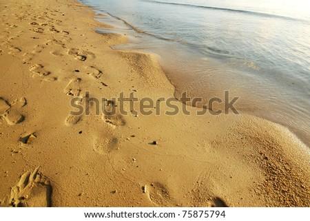 Trail on the Beach - stock photo