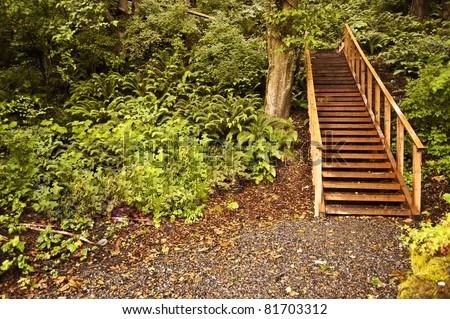 Trail through Sehome Hill Arboretum at Western Washington University in Bellingham, Washington - stock photo