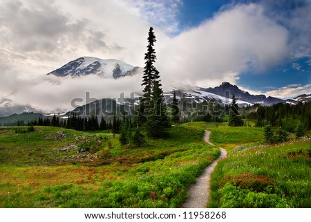 Trail to Rainier - stock photo