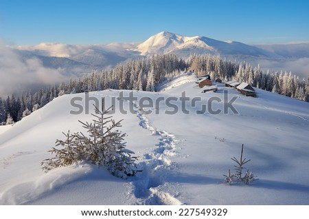 Trail to the mountain huts. Winter is in a fabulous location. Mountains Carpathians, Ukraine, Europe. Christmas landscape - stock photo