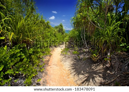 Trail way through Curieuse Island