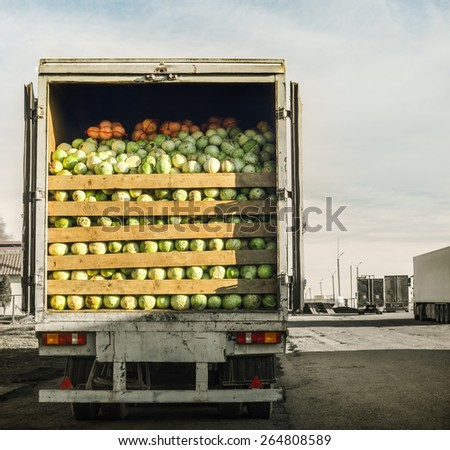 trailer laden with cabbage - stock photo