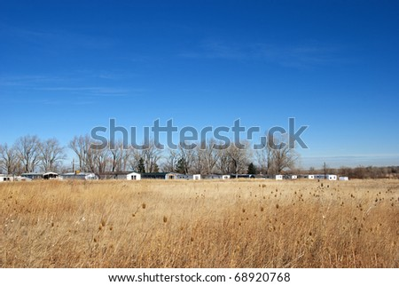 Trailer park and line of bare winter trees in the distance over a golden field on the Colorado prairie. - stock photo