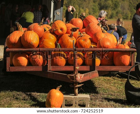 Trailer with pumpkins at a pumpkin festival; blurry figures of people in the background; Missouri, Midwest