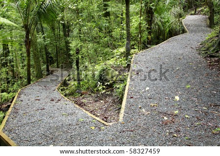 Trails in lush green dense tropical forest - stock photo